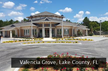 Valencia Grove
